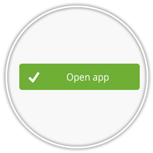 Open app button from Ecwid My Apps list